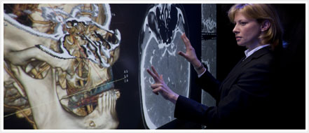Perceptive Pixel Multi-Touch Wall™ Medical Application